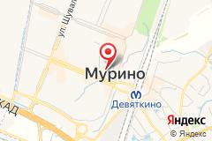 Санкт-Петербург, пос. Мурино, ул. Екатерининская, д. 2-285