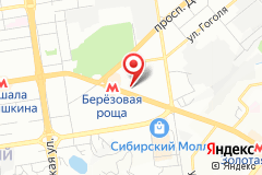 Новосибирск, ул. Кошурникова, д. 5