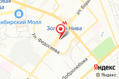 Новосибирск, ул. Бориса Богаткова, д. 208