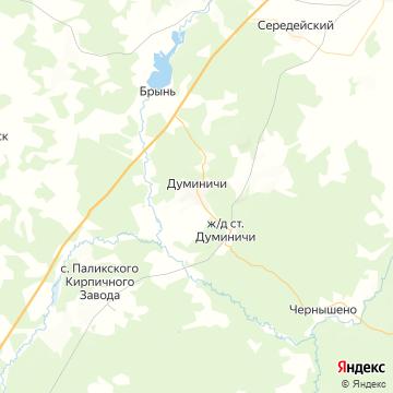 Карта Думиничей