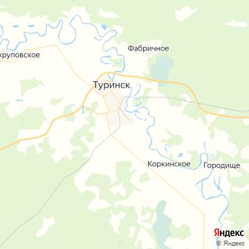 Карта Туринска