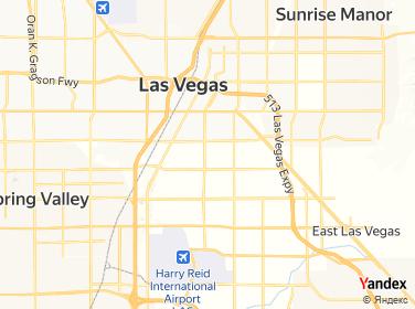 ➡️ Animal Kingdom Veterinary Hospital Acupuncture Nevada