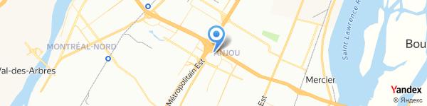 Dynamite Anjou