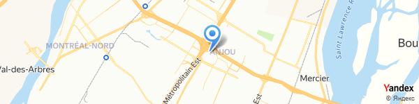 Mexx Anjou