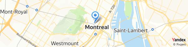 Dynamite Montréal