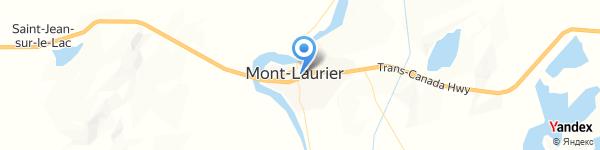 Bedaines & Coccinelles Mont-Laurier 384 Rue du Pont