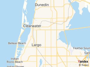 Direction for - 1 Tree  Lawn Llc Clearwater,Florida,US