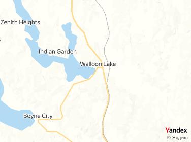 Walloon Lake Water System Inc