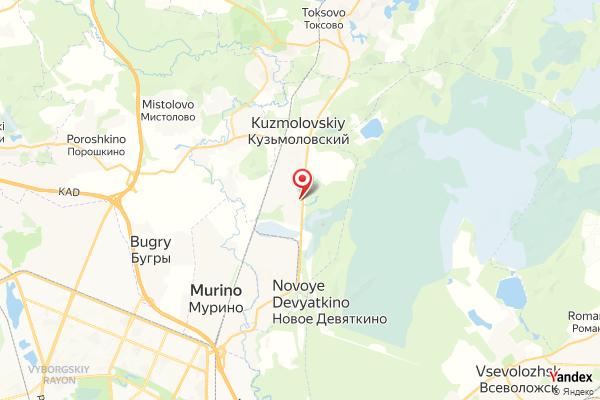 St. Petersburg FlyStation Webcam Live