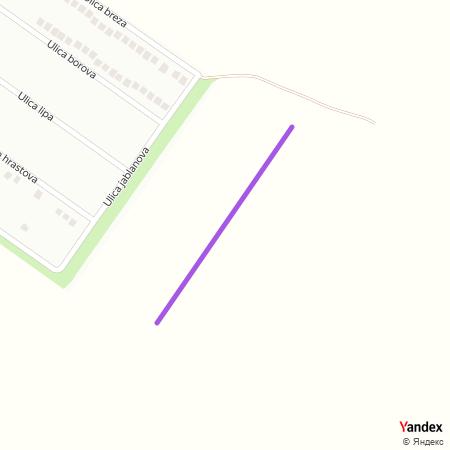 Улица јасенова на Yandex мапи