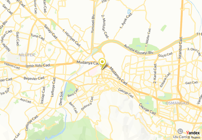 Bursa Anadolu Lisesi Haritası