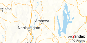 Direction for - Woolf, Stephen R Amherst,Massachusetts,US