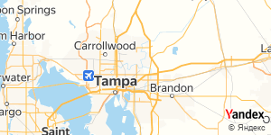 Direction for - Roosen Wellness, Llc. Tampa,Florida,US