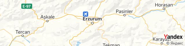 Erzurum Posta Kodu