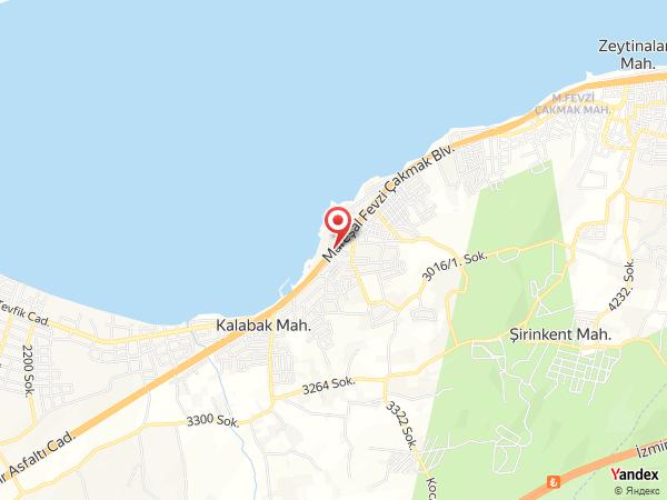 Beygua Yol Haritası