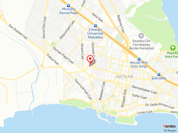 Cem LokmanHekim Yol Haritası