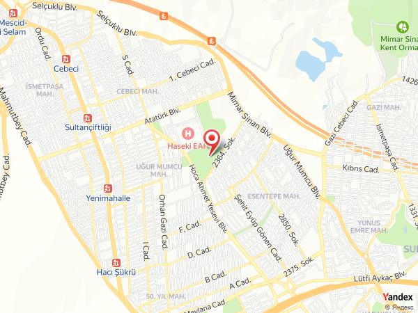 Salon Venedik / Cebeci Şehir Parkı Yol Haritası