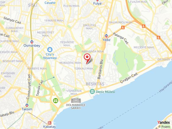 Mahmut Görgen Yol Haritası