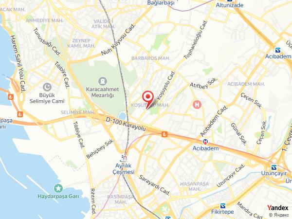 İstanbul Performans Orkestrası Yol Haritası