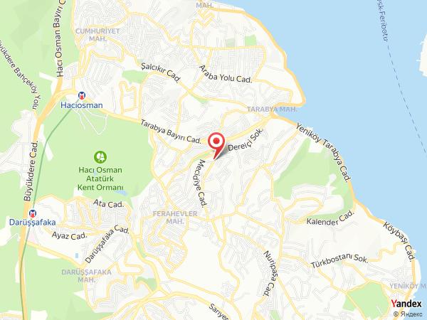 Dalia Davetiye Yol Haritası