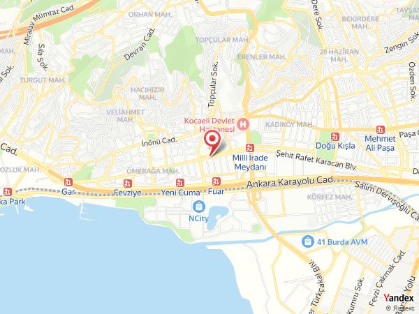 Ecrin Organizasyon Yol Haritası