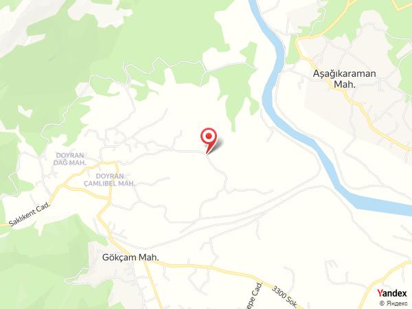 Filiz Yüksekdağ Davetiye Yol Haritası