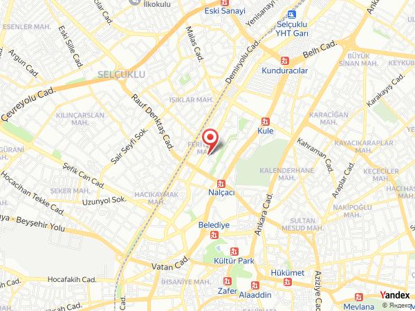 Rengarenk Organizasyon Yol Haritası