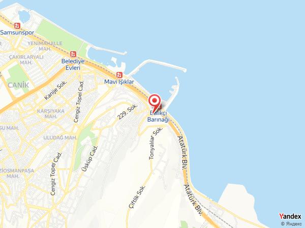 Dünya Organizasyon - Wedding Port Yol Haritası