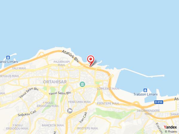 Seva Organizasyon Yol Haritası