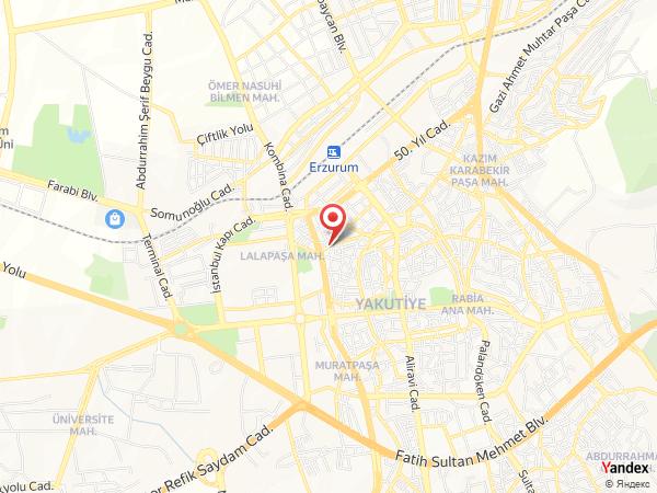 Erzurum Oto Kiralama Yol Haritası