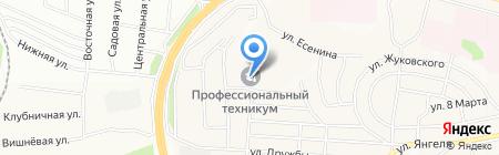 Братский профессиональный техникум на карте Братска