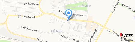 Стрекоза на карте Братска