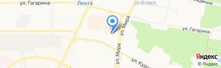 Тайга на карте Братска