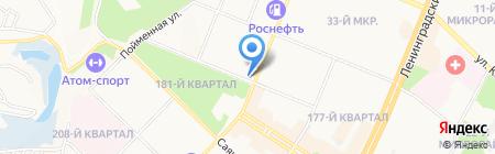 Тортуга на карте Ангарска