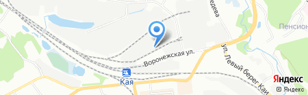 Три льва на карте Иркутска