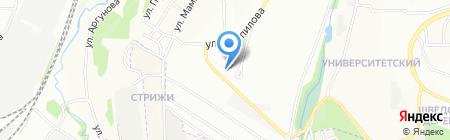 Стрекоза на карте Иркутска