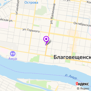 Дальневосточный научный центр физиологии и патологии дыхания на карте