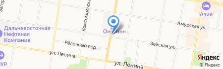 Институт геологии и природопользования ДВО РАН на карте Благовещенска