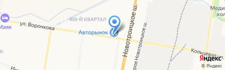 Контейнер №100 на карте Благовещенска