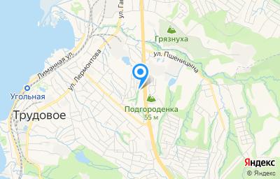 Местоположение на карте пункта техосмотра по адресу г Владивосток, п Трудовое, пер Петропавловский, д 10