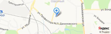 Пес и Кот на карте Хабаровска