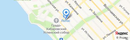 Демократия на карте Хабаровска