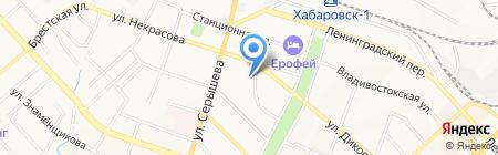 Солидарность на карте Хабаровска
