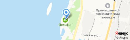 Дельфин на карте Хабаровска