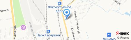 Зеленый попугай на карте Хабаровска