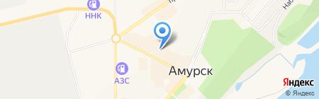 Эрудит на карте Амурска