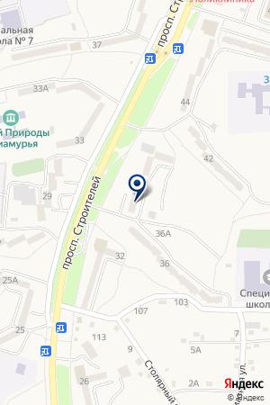 Амурская районная станция по борьбе с болезнями животных на карте Амурска