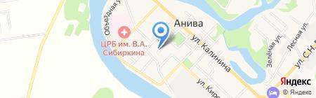Подберезовик на карте Анивы