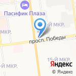 Stels на карте Южно-Сахалинска