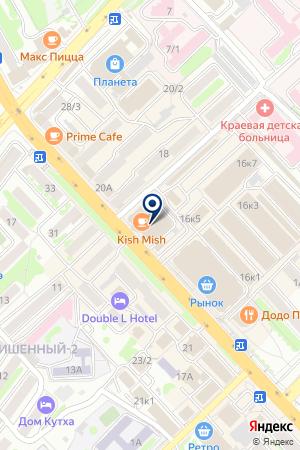 Рыжий кот на карте Петропавловска-Камчатского